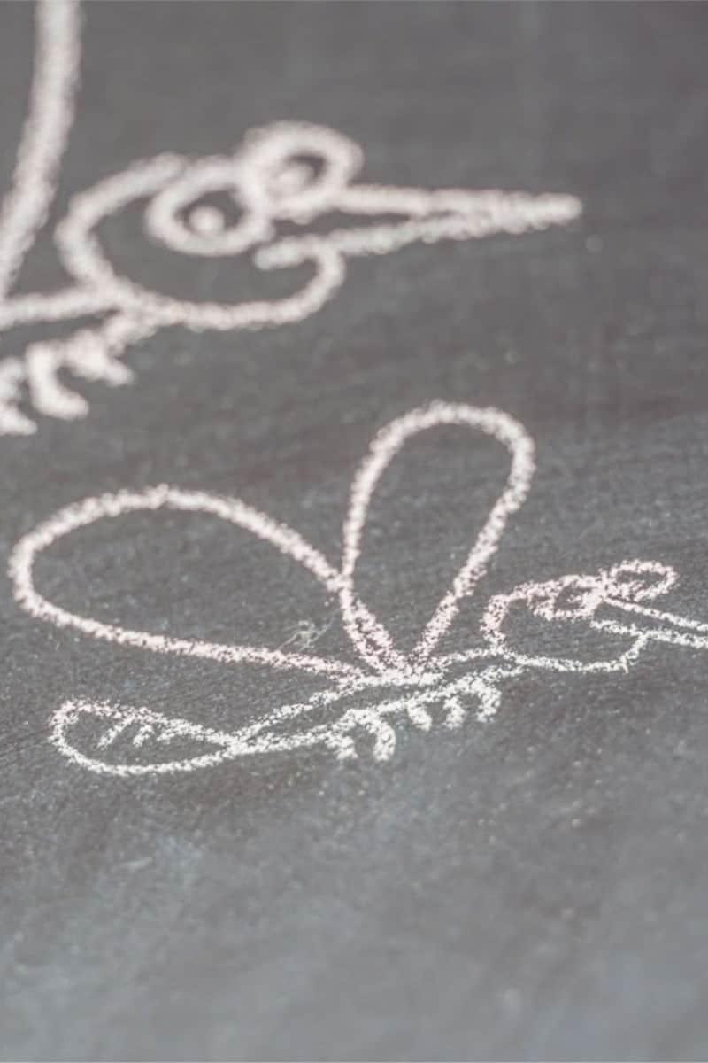 chalk mosquito drawming