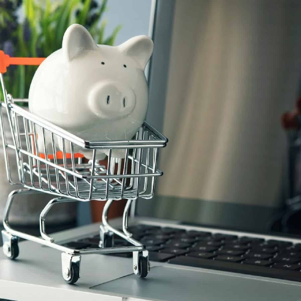 piggy bank in shopping cart