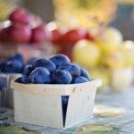 shopping the farmers market for blueberries